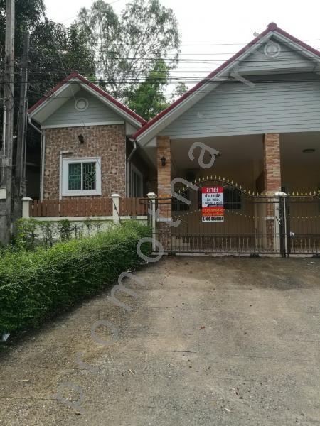 Sales Pattaya Bangsarey-Sattahip